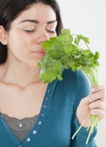 hello-cilantro-goodbye-heavy-metals