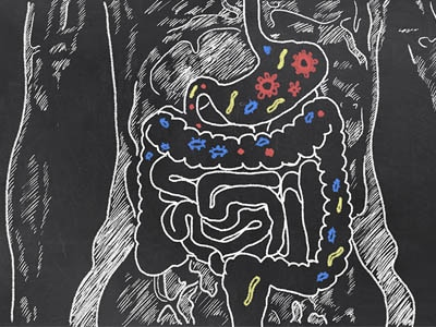 Study Suggests Probiotics May Prevent Cavities