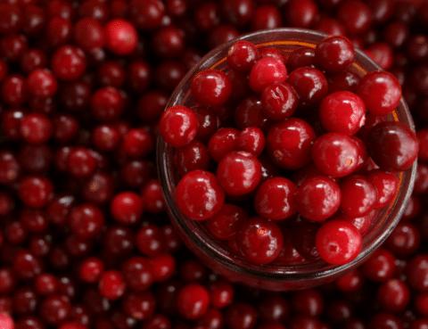 Oral Health Benefits of Cranberries