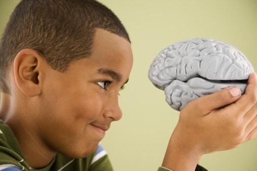 Fluoride's Effect on the Brain