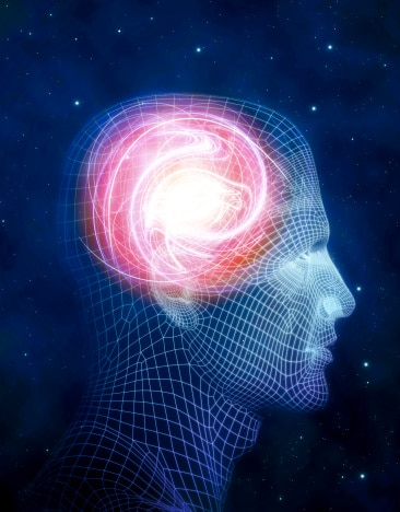 How Does Fluoride Affect the Pineal Gland?